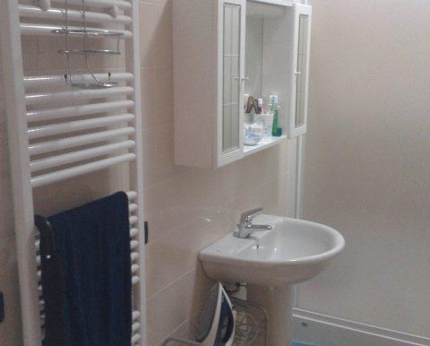 appartamento-bilocale-in-affitto-a-dalmine-guzzanica-bagno