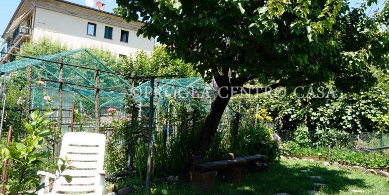 trilocale-in-vendita-a-villa-dalme-con-giardino-esterno